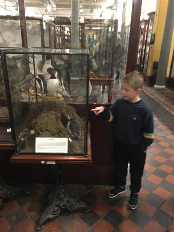 2nd class trip to the Natural History Museum